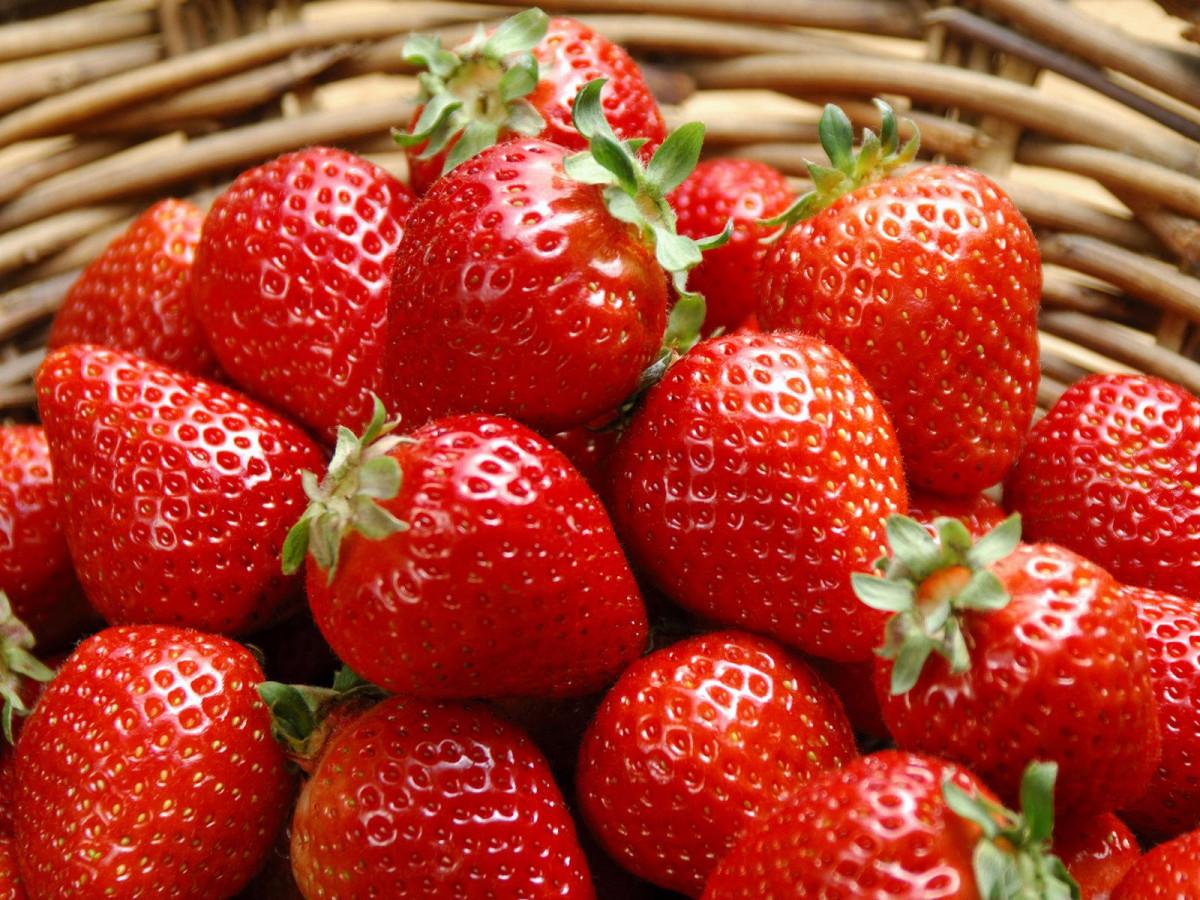 Рецепт браги из ягод клубники (земляники)